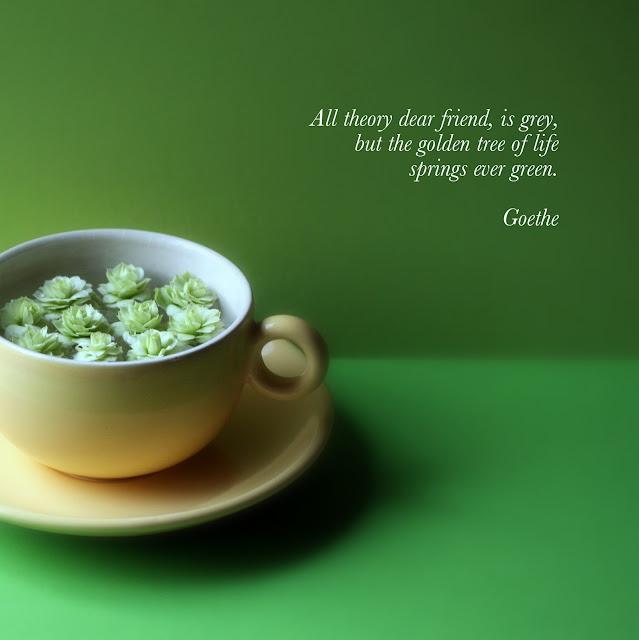 Green Tea Quotes Quotesgram