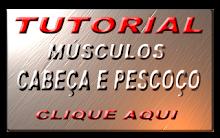 Mm. CABEÇA E PESCOÇO