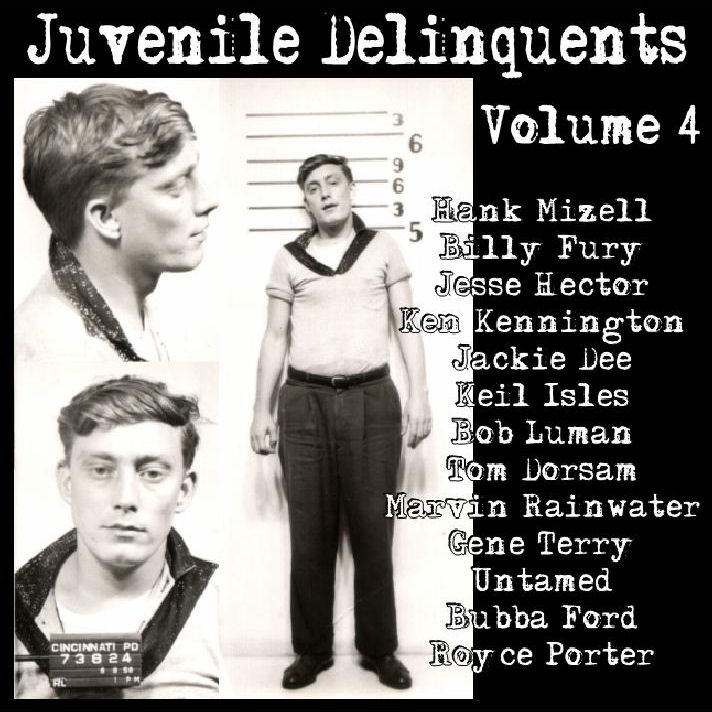 juvinile delinquents Juvenile delinquency and family structure by juveniles are more likely to become juvenile delinquents if there is little structure provided for them in their.