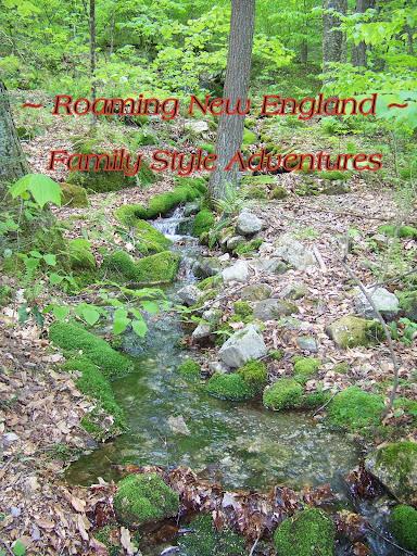 <center>~ Roaming New England ~</center>