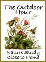The Wonders of Creation:  Our Family's Outdoor Hour