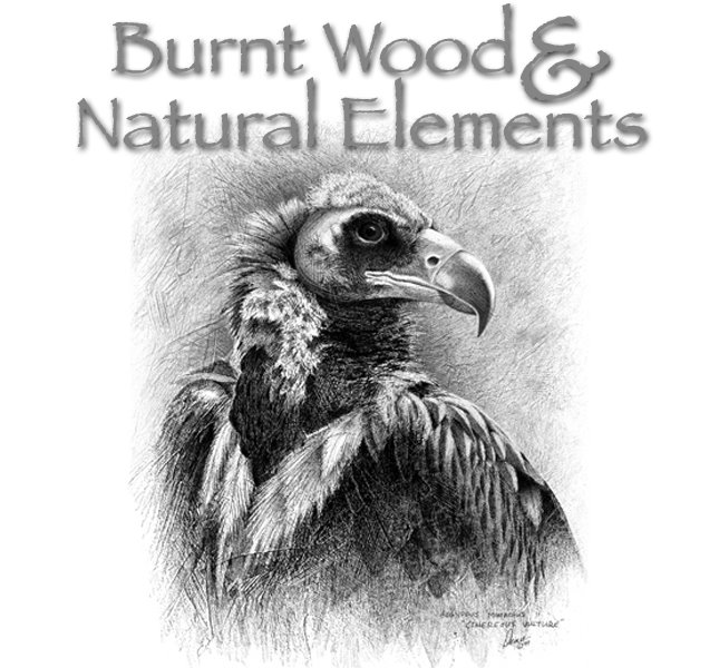 Burnt Wood and Natural Elements