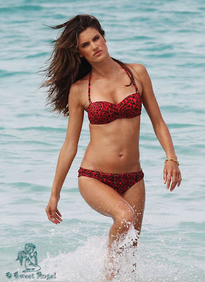 alessandra_ambrosio_hot_wallpaper_02_sweetangelonly.com