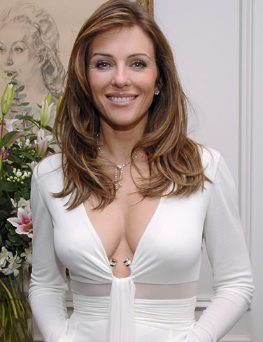 elizabeth hurley wallpapers. Hurley became well-known due