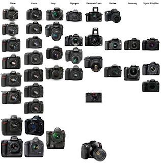 Digital-SLR-Cameras