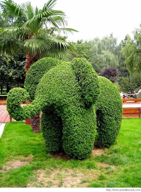 Esculturas con el cesped. 2009092304362200000001690000029852