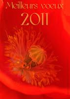 Joyeuses fêtes, carte de voeux 2011