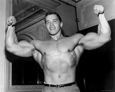 arnold schwarzenegger workout book. arnold schwarzenegger workout
