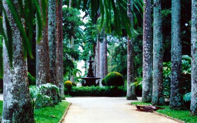 ipe de jardim botânico:Conheça alguns dos jardins mais belos do mundo – Verde em Folha