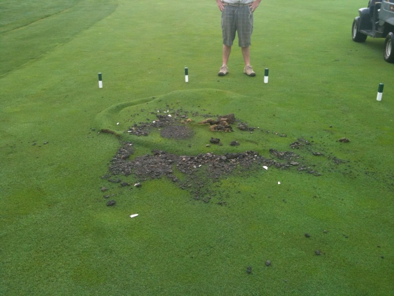 Iaturf Lightning Strike At Makray Golf Course In Illinois
