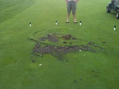 Iaturf Lightning Strike At Makray Golf Course In Illinois