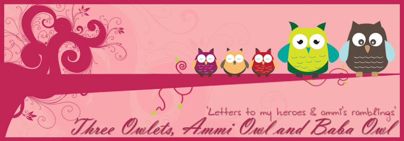 Three Owlets, Ammi Owl and Baba Owl