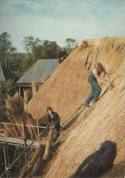 men on a roof re-thatching it