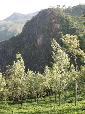 Landscapes, Catherine falls