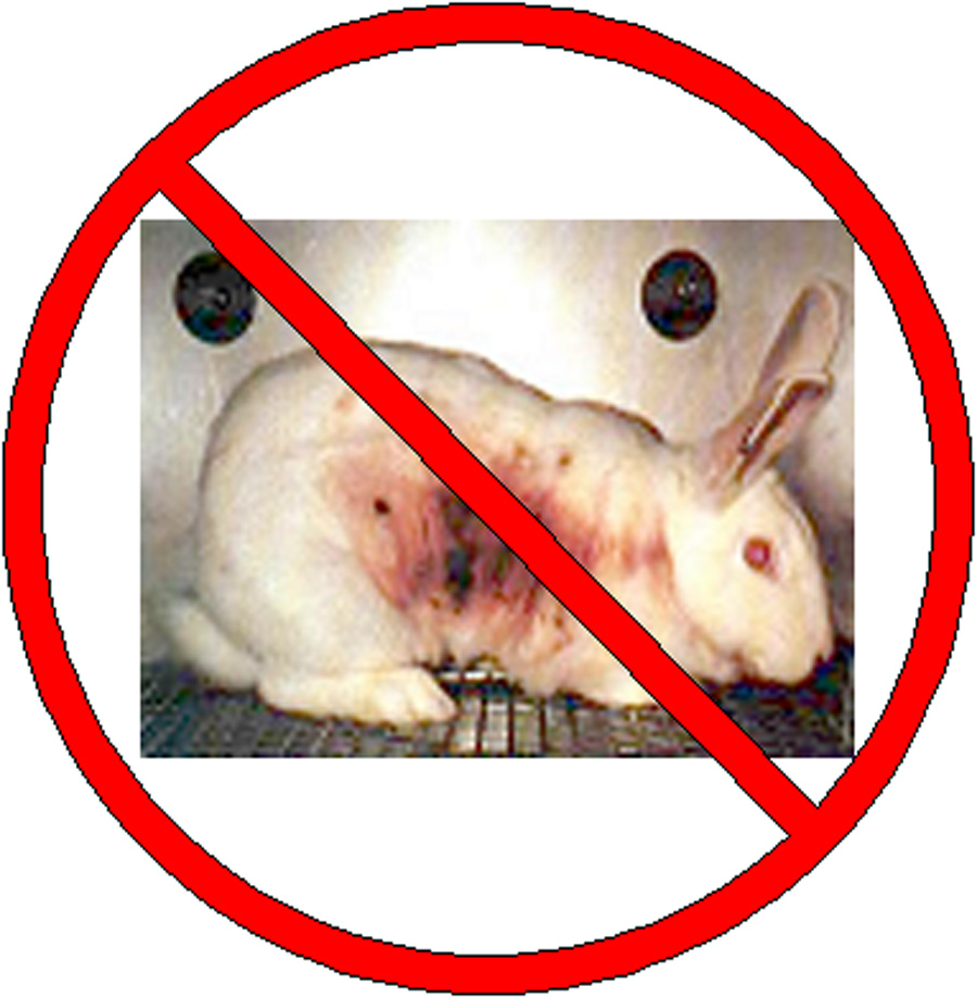 animal testing both cost ineffective and Driven both by legislative mandate and scientific need, a new suite of in vitro and cell culture-based animal -free methods are gaining a animal testing is thus.