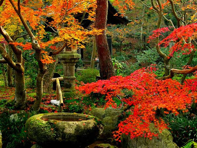Astonishing Japanese Zen-