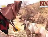 FAMINE IN NEP