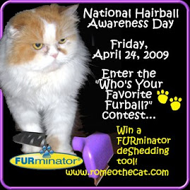 FURball Contest