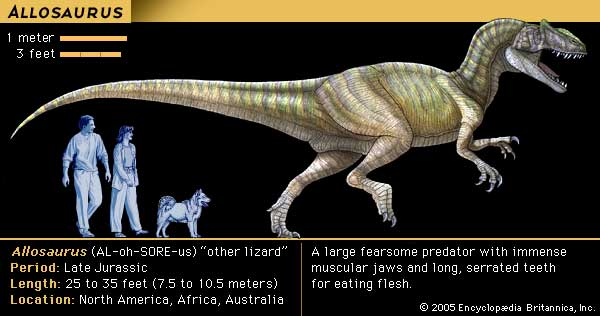 [Image: allosaurus.jpg]