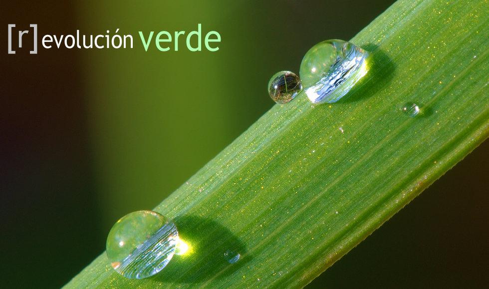 [r]Evolución Verde
