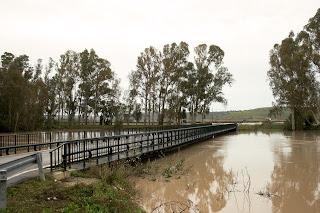 Puente de La Greduela