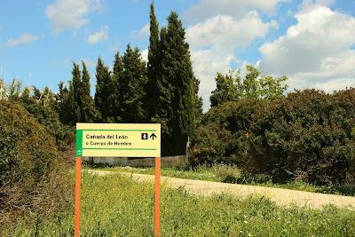 Cruce con la 'Cañada del León' o 'Cuerpo de Hombre'