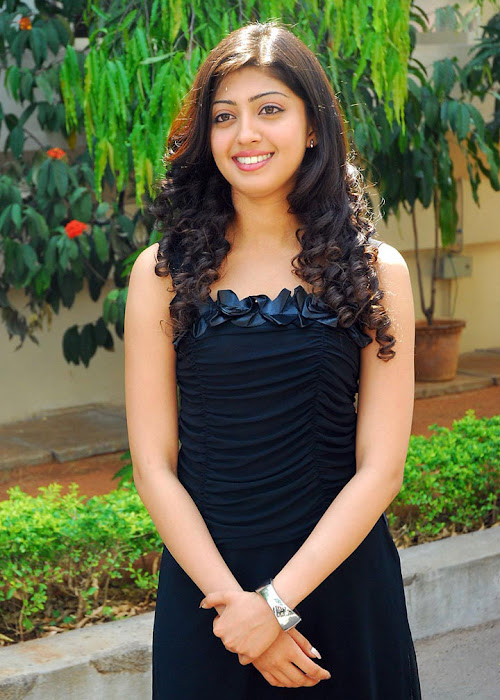 praneetha exclusivie telungu movie bava praneetha glamour  images