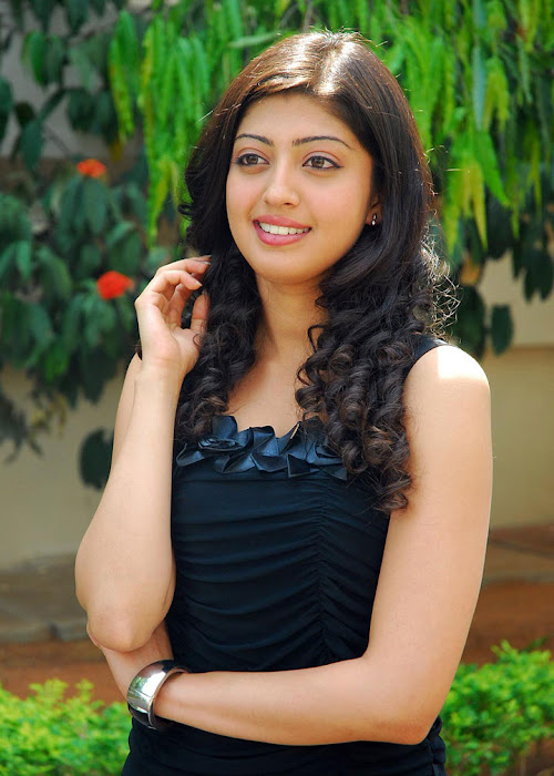 praneetha exclusivie telungu movie bava praneetha hot photoshoot