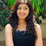 Pranitha in Black   Cute Photos