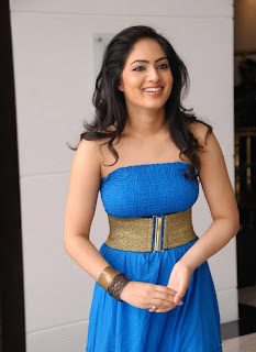 Nikesha Patel Latest Photo Stills 12