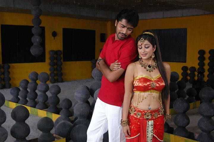 Tollywood Entertainment  Movie News orange Wallpapers Actress
