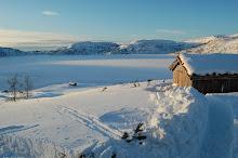 Vidunderleg vintervakkert
