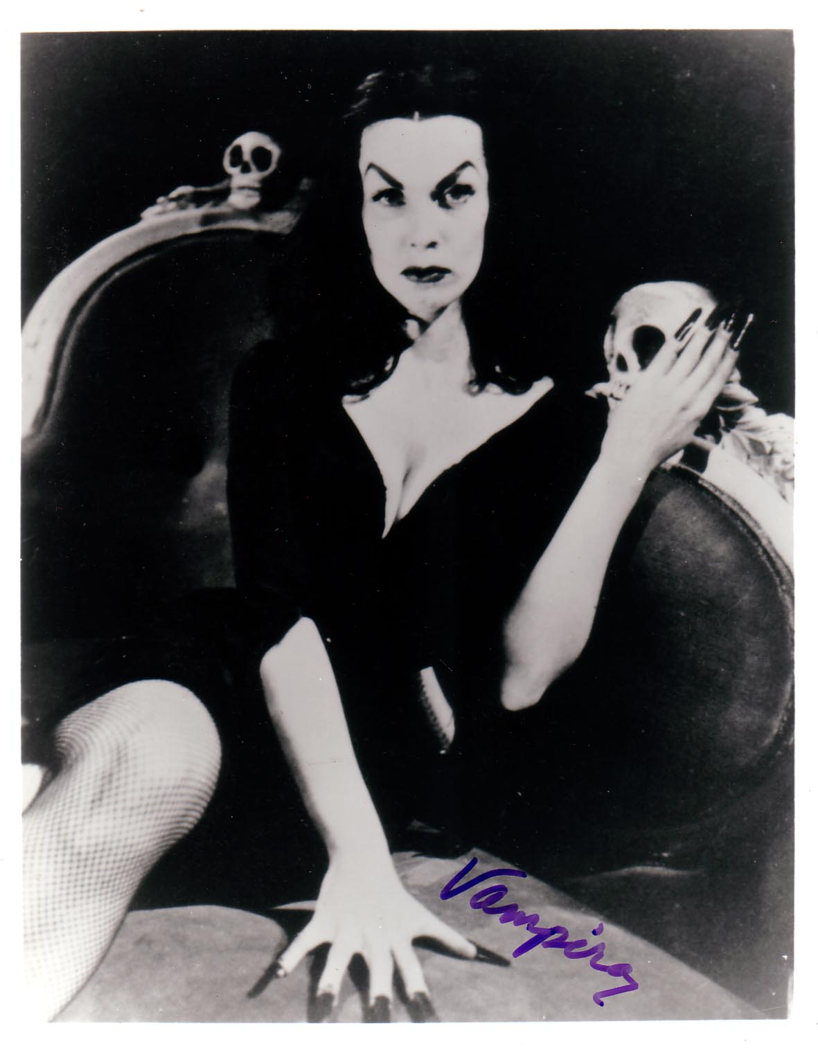 Vampira - Gallery Colection