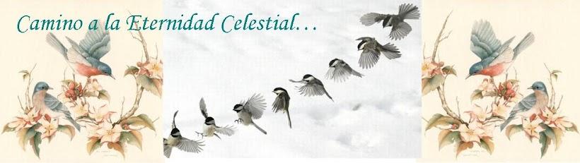 Camino a la Eternidad Celestial