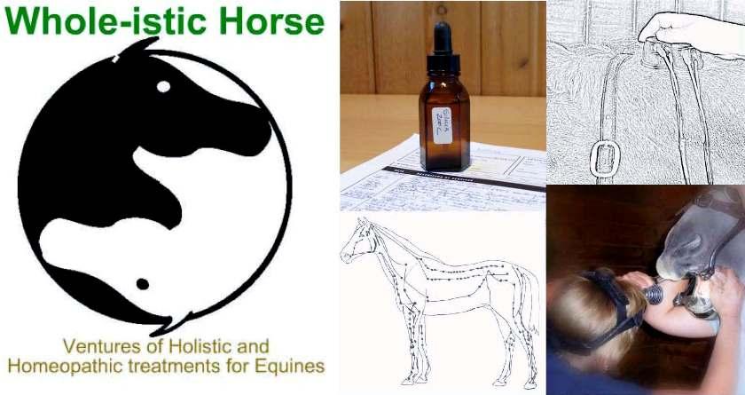 Whole-istic Horse