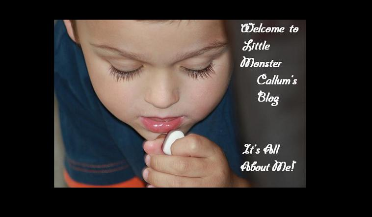 Welcome To Little Monster Callum's Blog