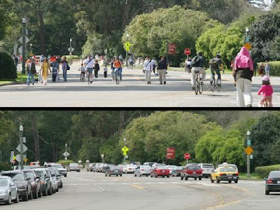 Image of JFK Drive in Golden Gate Park