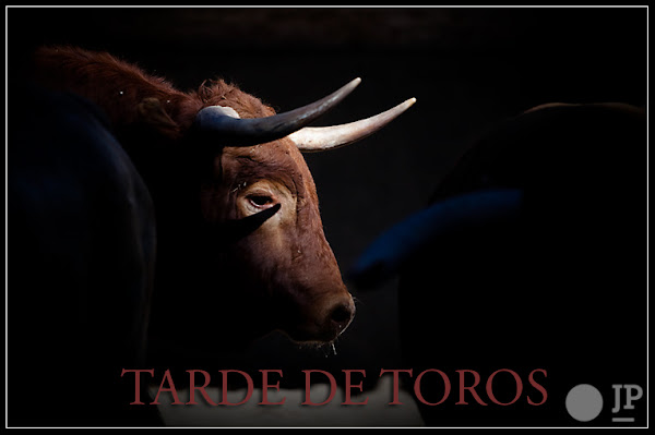 Tarde De Toros