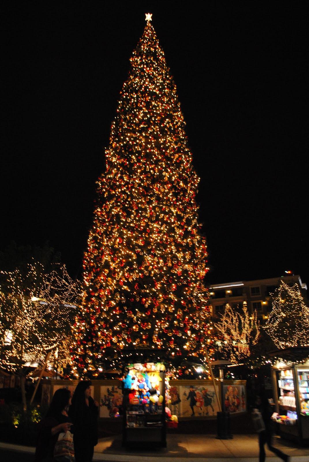 Tre sei cinque o christmas tree of giant proportions