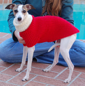 Knits /& Pieces  Greyhound Whippet /& Small Dog Coat Knitting Pattern.