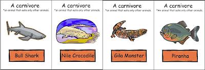 Carnivores!
