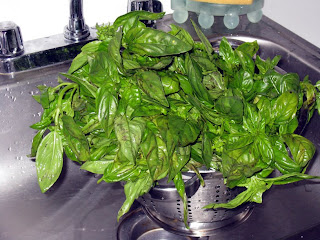 Washed basil