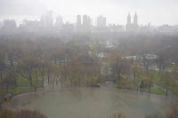 Rainy Day in Central Park