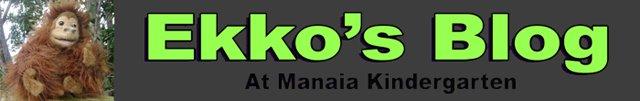 Ekko at Manaia