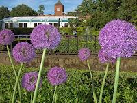 8-Flores en Holland Park