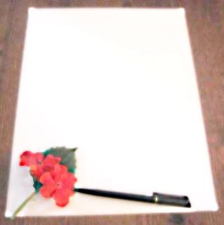 Full blanc (Pilar Campmany i Piqué)