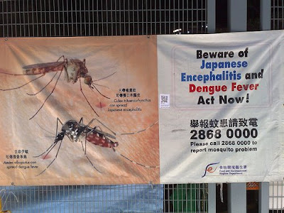 anti-Dengue fever campaign poster