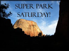 Super Park Saturday