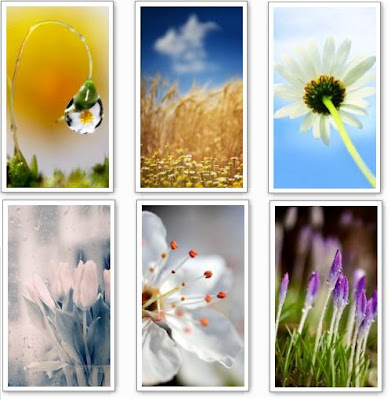 Download New High Quality Nature Wallpapers for Nokia 5800 and N97