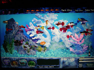 Harvest moon forever taking a break fish tycoon for Fish tycoon 2 guide